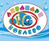 Автоматизирован аквапарк